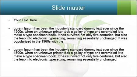 0000062712 PowerPoint Template - Slide 2