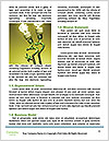 0000062712 Word Templates - Page 4