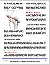 0000062713 Word Template - Page 4