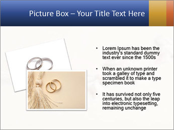 0000062721 PowerPoint Templates - Slide 20