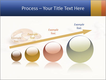 0000062721 PowerPoint Templates - Slide 87