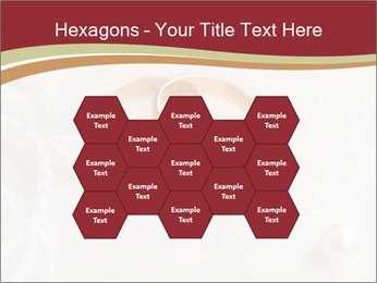 0000062722 PowerPoint Templates - Slide 44