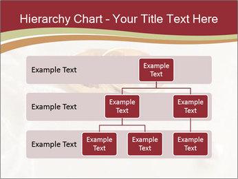 0000062722 PowerPoint Template - Slide 67