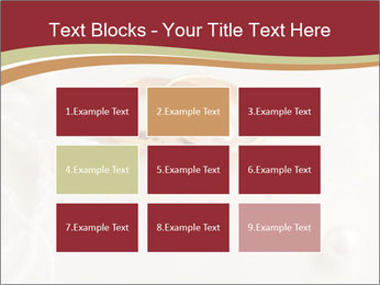 0000062722 PowerPoint Templates - Slide 68