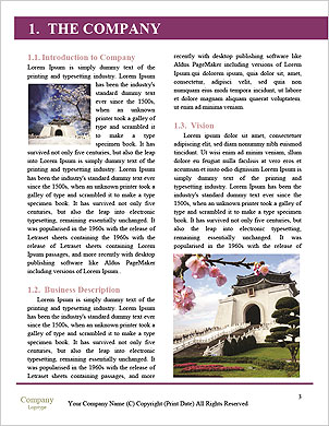 0000062723 Word Template - Page 3