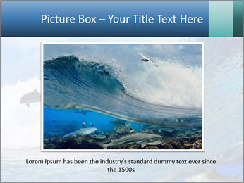 0000062747 PowerPoint Template - Slide 16