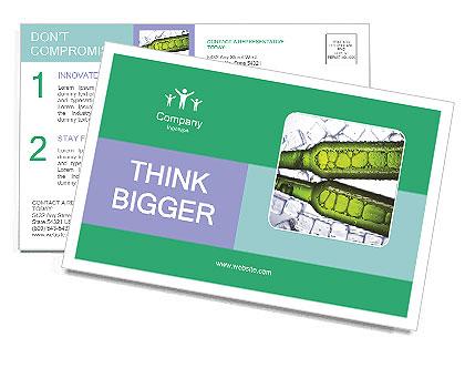 0000062748 Postcard Templates