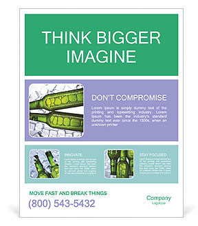0000062748 Poster Template