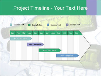 0000062748 PowerPoint Template - Slide 25