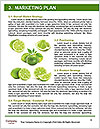 0000062751 Word Templates - Page 8