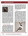 0000062779 Word Template - Page 3
