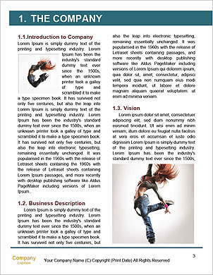 0000062784 Word Template - Page 3