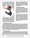 0000062784 Word Templates - Page 4