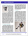 0000062785 Word Template - Page 3