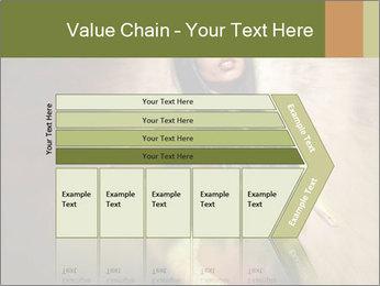 0000062790 PowerPoint Templates - Slide 27