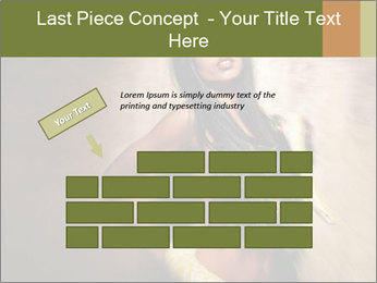 0000062790 PowerPoint Template - Slide 46