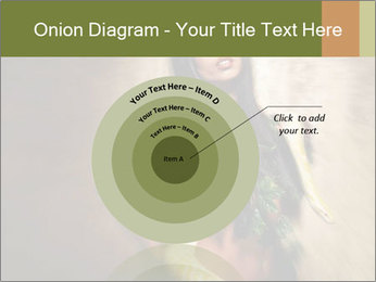 0000062790 PowerPoint Templates - Slide 61