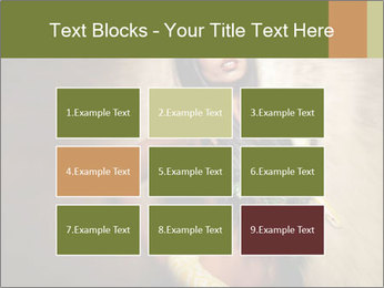 0000062790 PowerPoint Templates - Slide 68