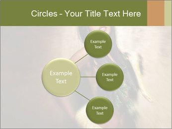0000062790 PowerPoint Templates - Slide 79