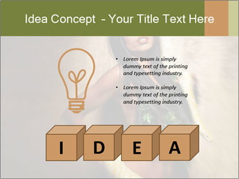 0000062790 PowerPoint Template - Slide 80