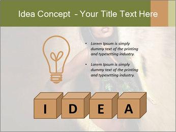 0000062790 PowerPoint Templates - Slide 80