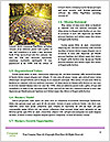 0000062797 Word Template - Page 4