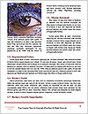0000062800 Word Template - Page 4