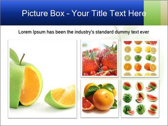 0000062805 PowerPoint Templates - Slide 19