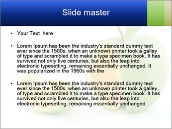 0000062805 PowerPoint Templates - Slide 2