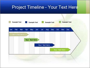 0000062805 PowerPoint Templates - Slide 25