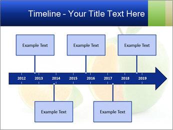 0000062805 PowerPoint Templates - Slide 28