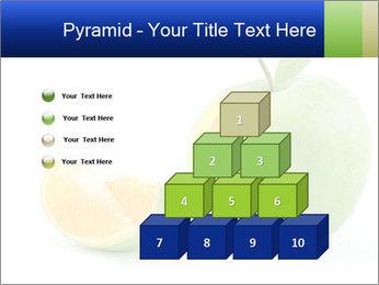 0000062805 PowerPoint Templates - Slide 31