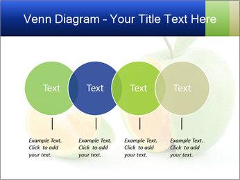 0000062805 PowerPoint Templates - Slide 32