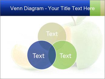 0000062805 PowerPoint Templates - Slide 33