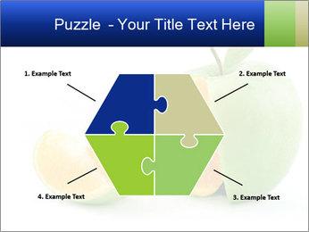 0000062805 PowerPoint Templates - Slide 40