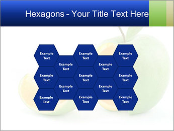 0000062805 PowerPoint Templates - Slide 44