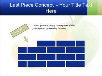 0000062805 PowerPoint Templates - Slide 46
