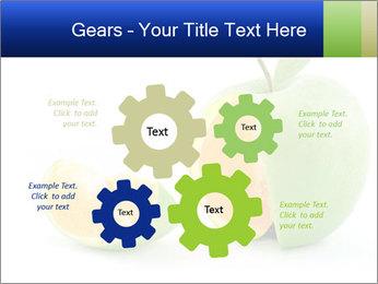 0000062805 PowerPoint Templates - Slide 47