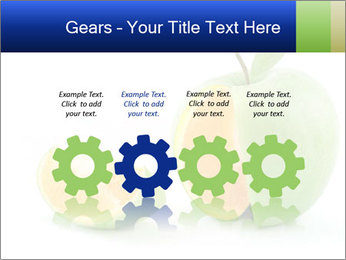 0000062805 PowerPoint Templates - Slide 48