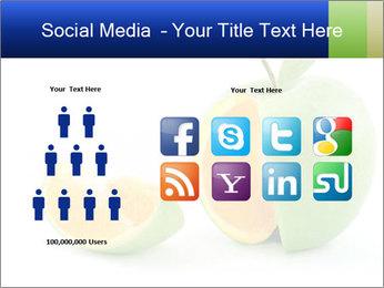 0000062805 PowerPoint Templates - Slide 5