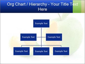 0000062805 PowerPoint Templates - Slide 66