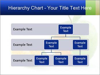 0000062805 PowerPoint Templates - Slide 67