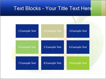 0000062805 PowerPoint Templates - Slide 68