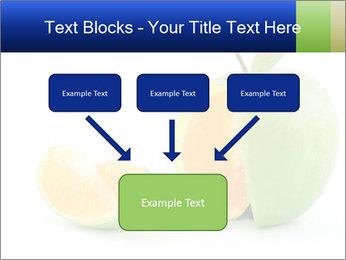 0000062805 PowerPoint Templates - Slide 70