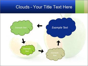0000062805 PowerPoint Templates - Slide 72