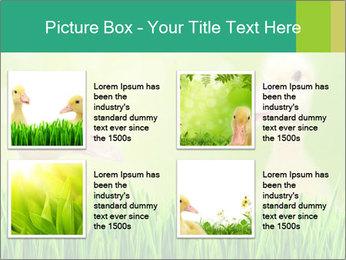 0000062807 PowerPoint Templates - Slide 14