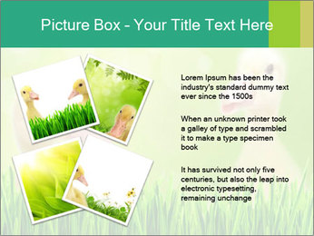0000062807 PowerPoint Templates - Slide 23