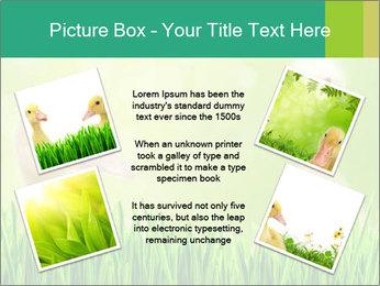 0000062807 PowerPoint Templates - Slide 24