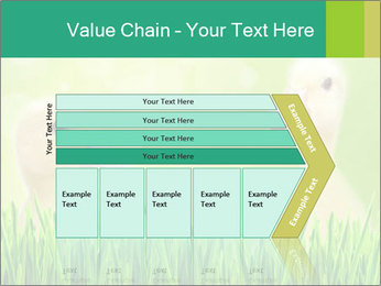 0000062807 PowerPoint Templates - Slide 27