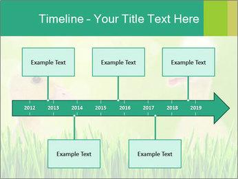 0000062807 PowerPoint Templates - Slide 28